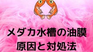 medakasuisouyumaku