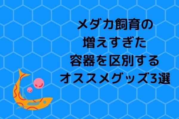 medakasiikuyoukikubetuguzzu